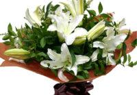 Какие цветы с доставкой по Кисловодску подобрать для аллергика?