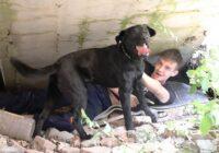 Кинологи МЧС тренирую служебных собак искать людей в горах