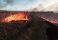 В крае резко увеличивается количество ландшафтных пожаров