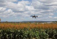 Бороться за урожай фермерам Ставрополья могут цифровые сервисы