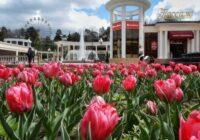 Турпоток в Кисловодске на майские праздники побил все показатели