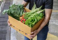 Едим меньше — выбрасываем больше