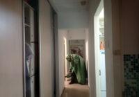 Профессиональная обработка квартиры и уничтожение клопов